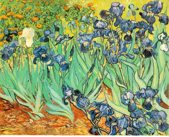 (vangogh)-irises