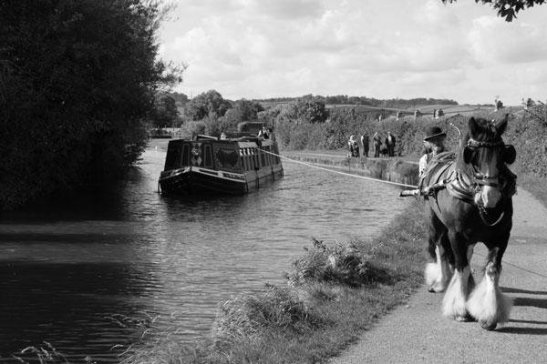Horse_Drawn_Barge_1