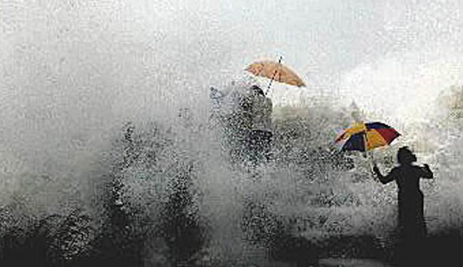7 tsunami umbrella