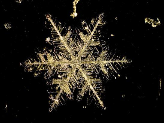 11 Snowflake Manitoba Canada