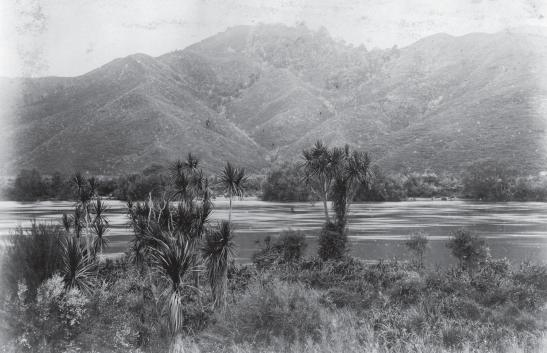 4 waikato river, near Taupiri, c.1880, photographed by Burton Brothers. alexander Turnbull Library