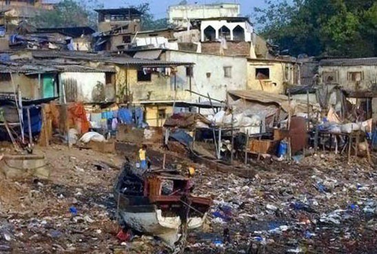 1 bombay shanty