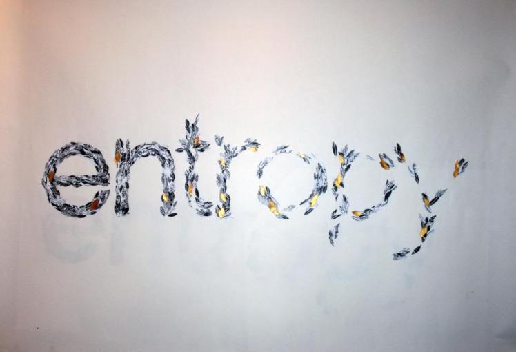 2 Entropy