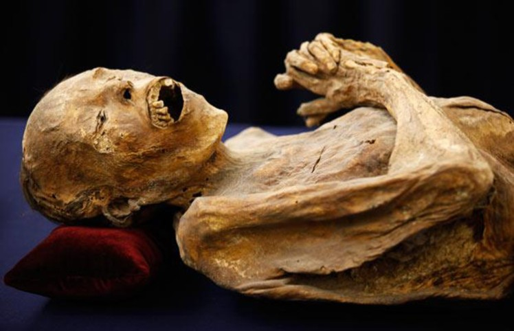 6 mummy