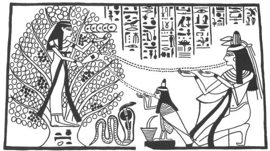 5 Tree of life Egypt