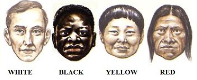 5a Skin Colour