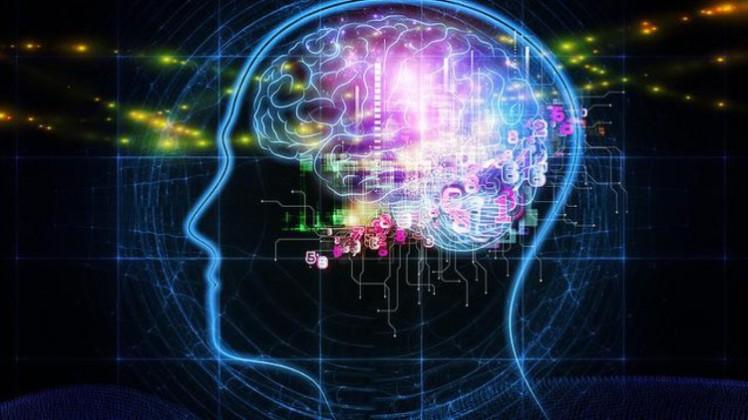 3-big-brain